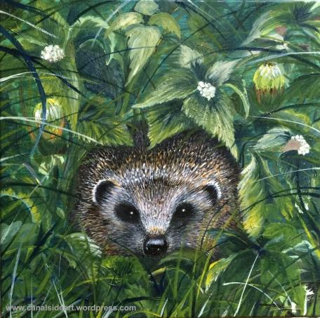 Hedgehog for web.jpg