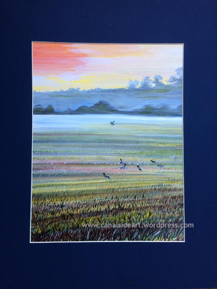 ducks-on-wier-field