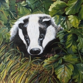 """Badger"" Original Oil on Canvas. 40x40cm SOLD"