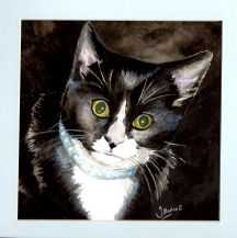 """Sox"" Watercolour Pet Portrait. Sold"