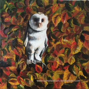 """Barn Owl"" Original Oil on Canvas. 40 x40cm. £69.00"