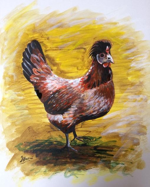 elvis-the-wonder-chicken