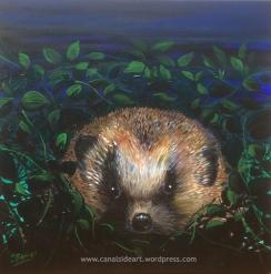 hedgehog 3 cropped
